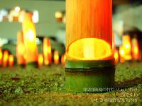 第2回鎮魂の竹灯り in いわき11