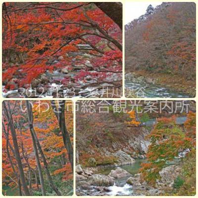 夏井川渓谷のコピー