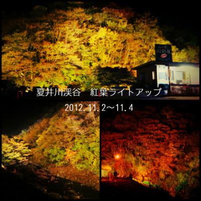 夏井川渓谷ライトアップ
