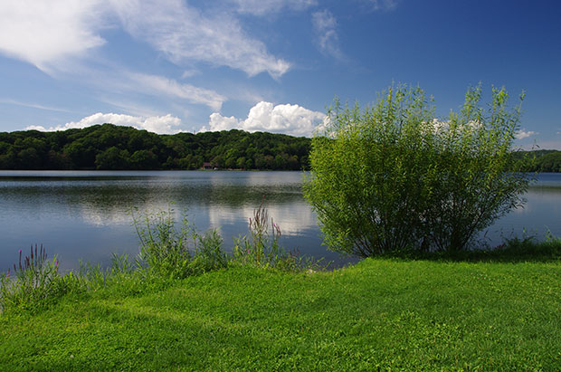 白老ポロトコタンの水辺