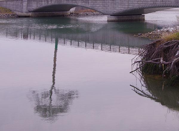 水面に映る一本松