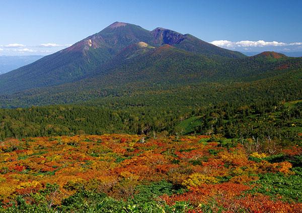 ニセ小畚から岩手山
