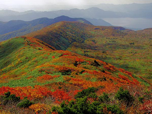 秋田駒ケ岳 外輪山の紅葉