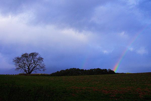 小岩井農場の虹