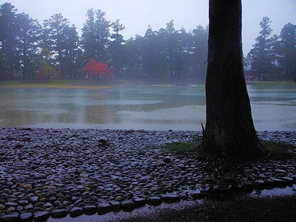 毛越寺の庭園