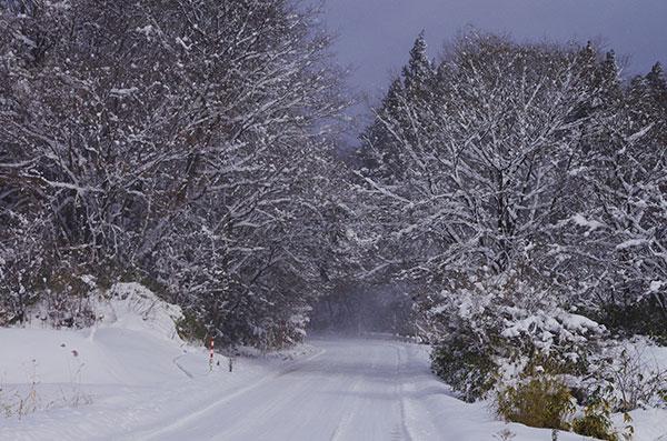 梁川の雪道