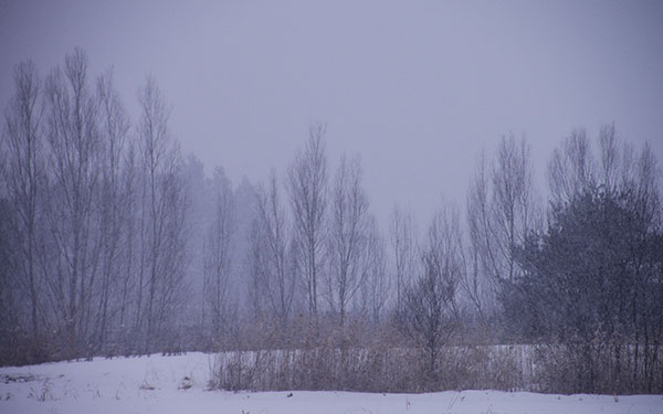 花巻市高松の冬景
