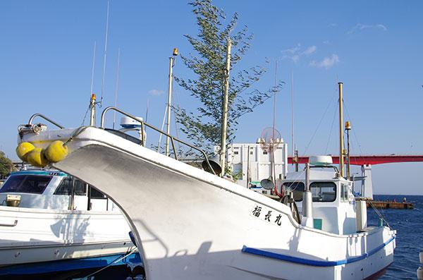三崎の漁船