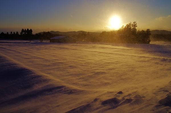石鳥谷の地吹雪