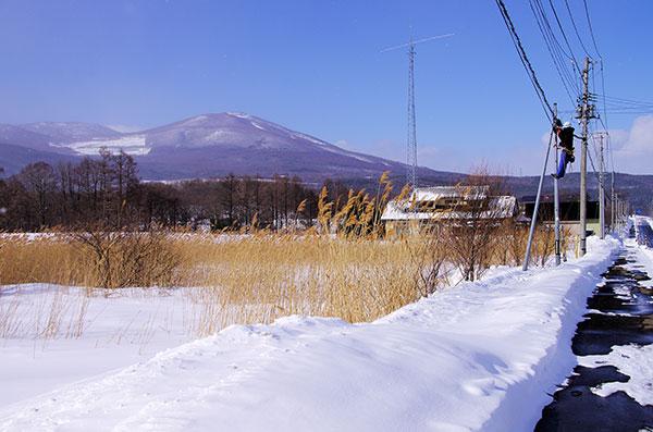 松尾寄木の電信柱点検