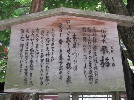 大宰府天満宮 (8)