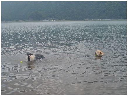 水があまり綺麗じゃなかったなぁ~