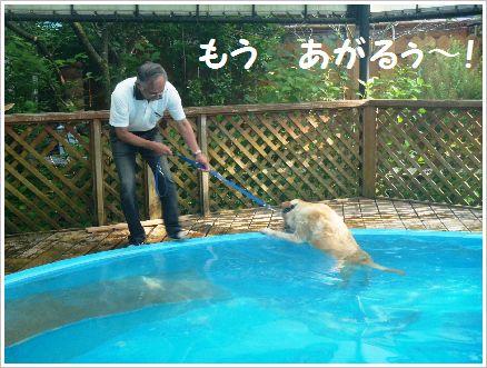 やっと泳げたのにぃ~・・・