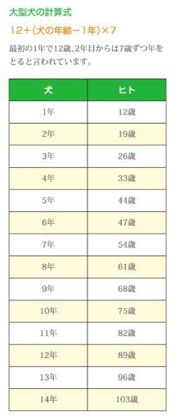 大型犬の年齢表