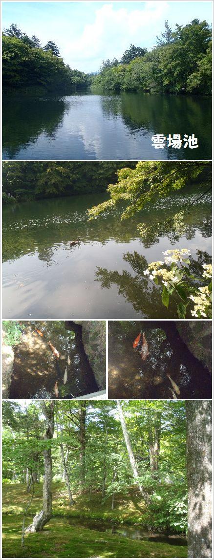 軽井沢 雲場池