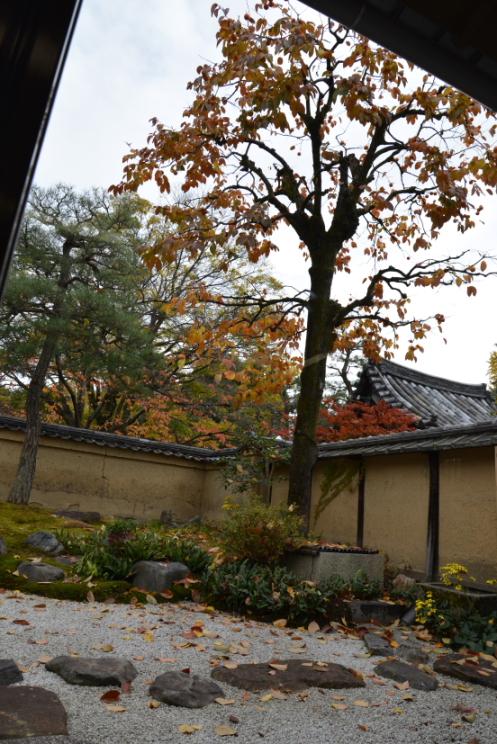 禅居庵庭園2