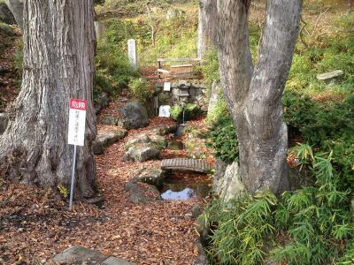 湧水口の入口