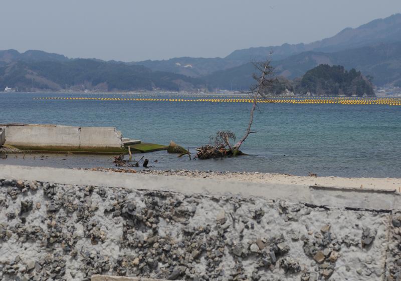 山田町_5