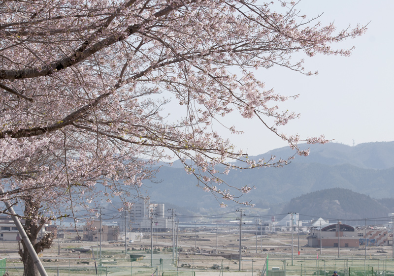 陸前高田_5