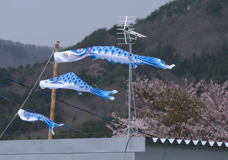 山田町_7