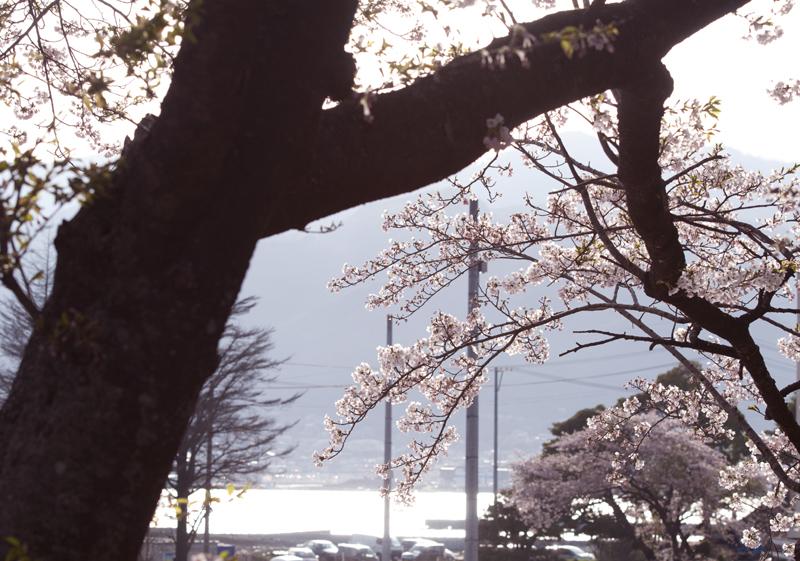 大船渡_7