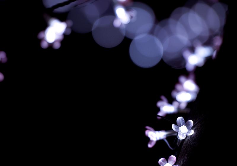 光のさくらまつり_8
