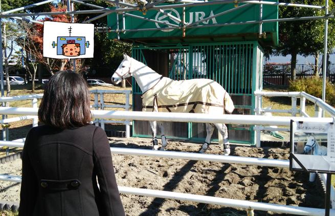 馬見学マイネルゴーシュ号のコピー