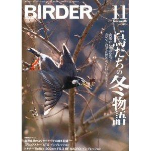 birder_20121025230646.jpg