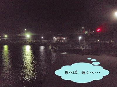 ②夜の漁港