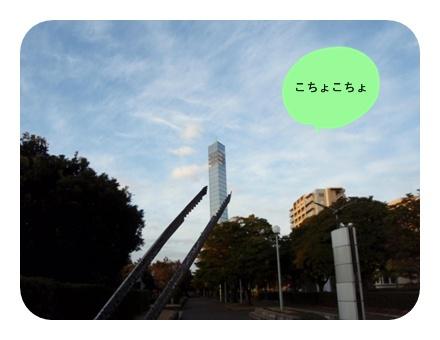 20130209①