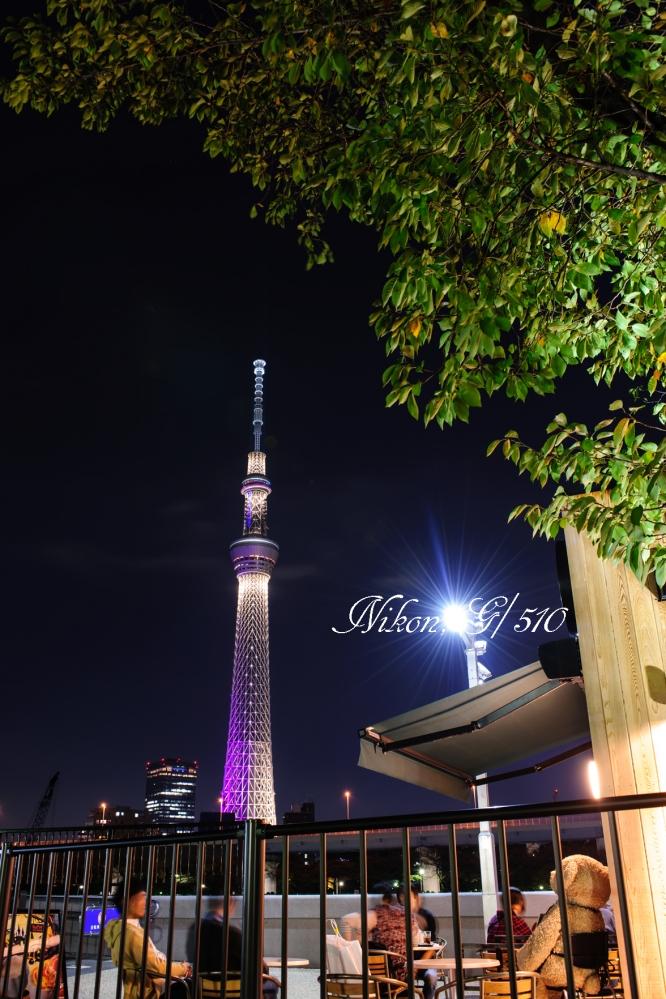 東京スカイツリーS