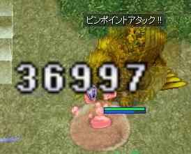 120710-4.jpeg