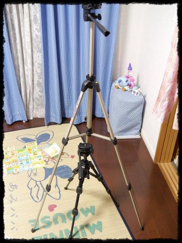 sikaku (25)