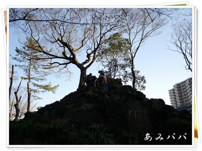 kaouea (6)