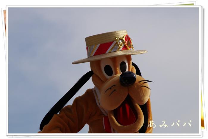 kobukobu (83)