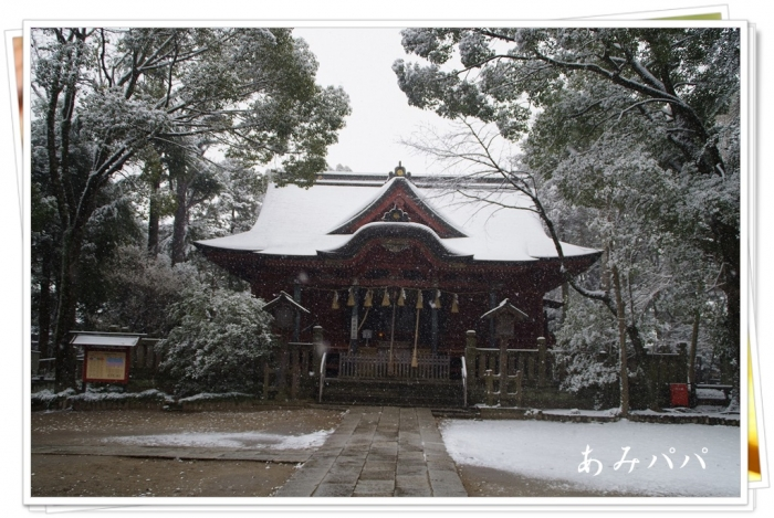 yukiki (8)