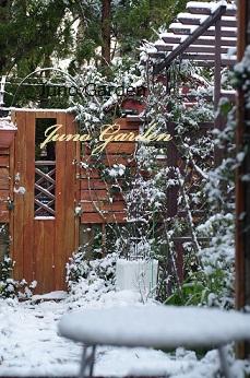 14裏庭雪