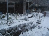 2014-12-17-025.jpg