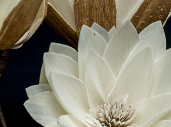 SANOE-FLOWER-アップ画像