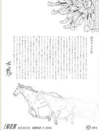 2013菊花賞新聞広告1