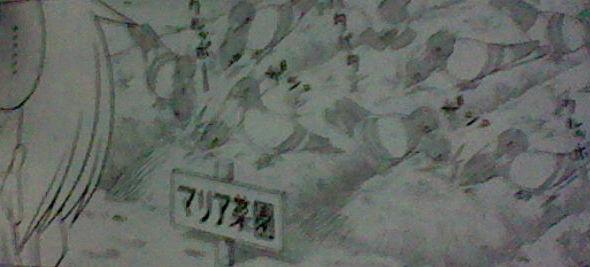 iC99EpsmdzwVxxz_20120518224018.jpg