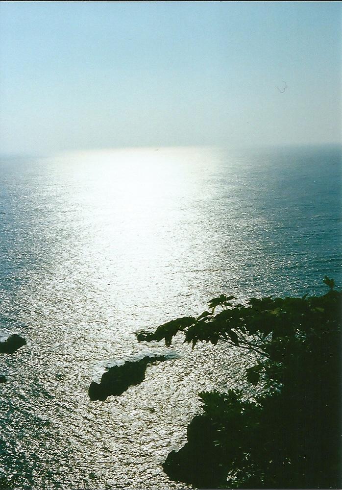 1大阪ー鹿児島 (34)