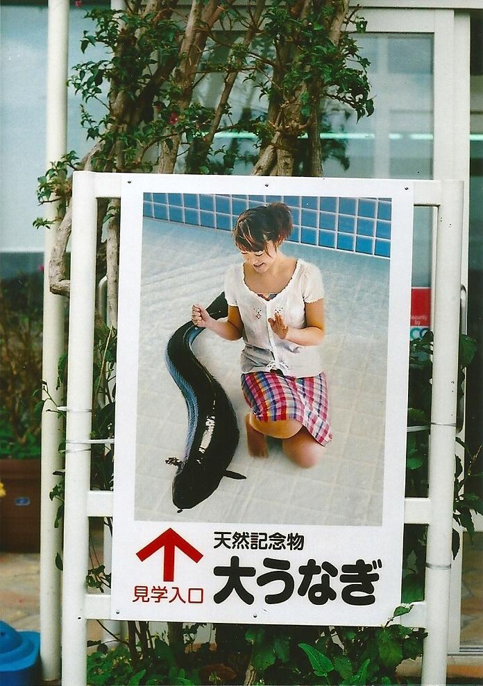 与論ー九州西側 (29)
