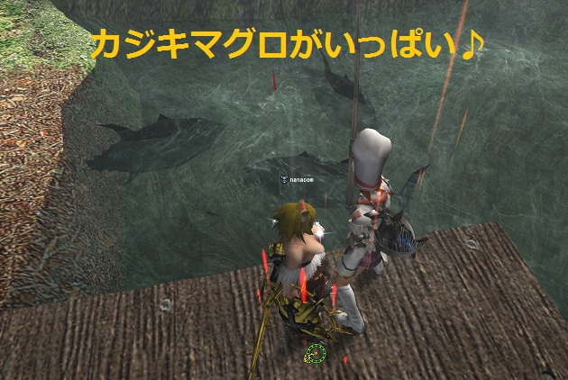 カジキ釣り2
