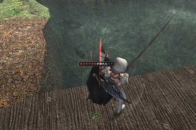カジキ釣り1