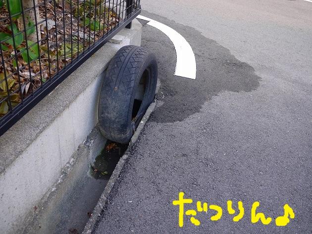 P1600755.jpg