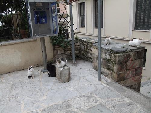 アテネ_アクロポリスの北で (1)