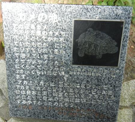 2012/07/27-28 長崎旅行(アカミミ石碑)