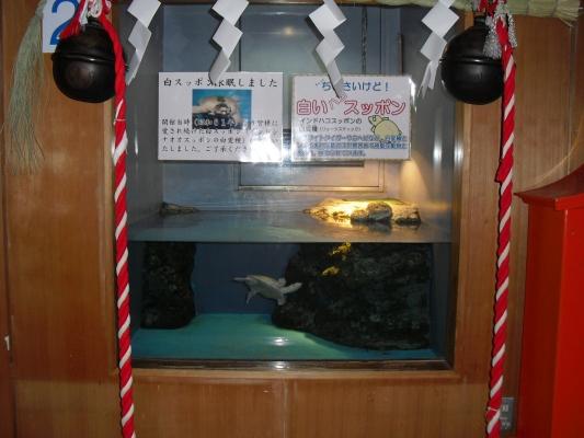 2012/04/29-02 伊豆アンディランド