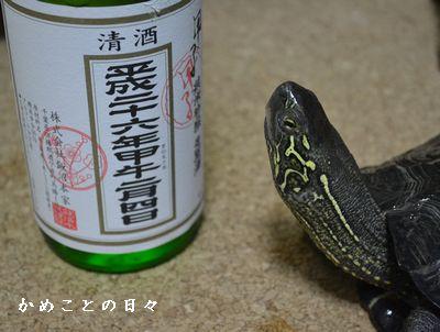 DSC_0075-sake.jpg